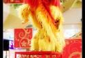 39 - China Hu Nan University