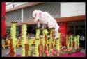 30 2009 Pre CNY Jurong Point Wenyang