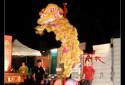 Tiger Beer CNY Celebrations