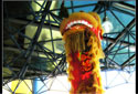 "Lion Dance ""Cai Qing"" at 3m"