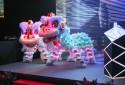 Twin LED Lion Stage Performance - Wenyang Sports Association LED lion dance (Ver.2012)
